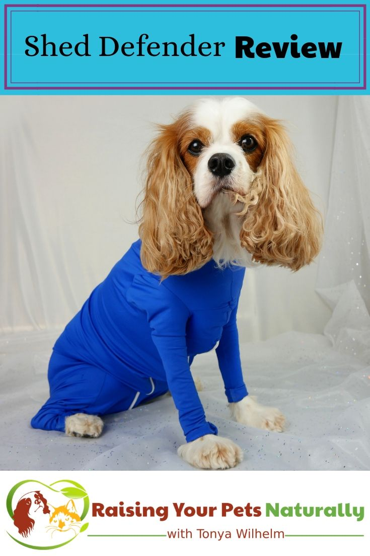Shed Defender Onesie For Dogs Review Your Pet Dog Shedding Pets
