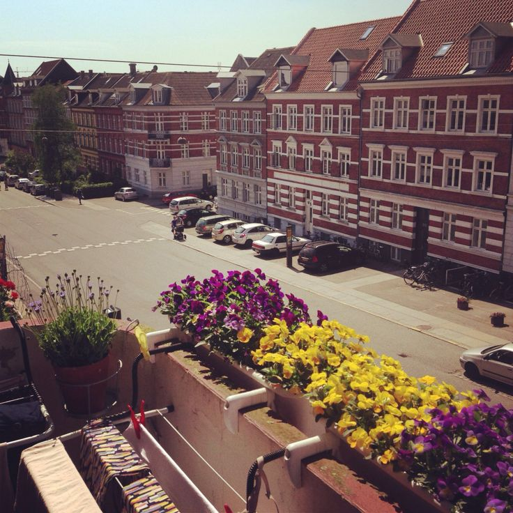 Aarhus, summer, Denmark