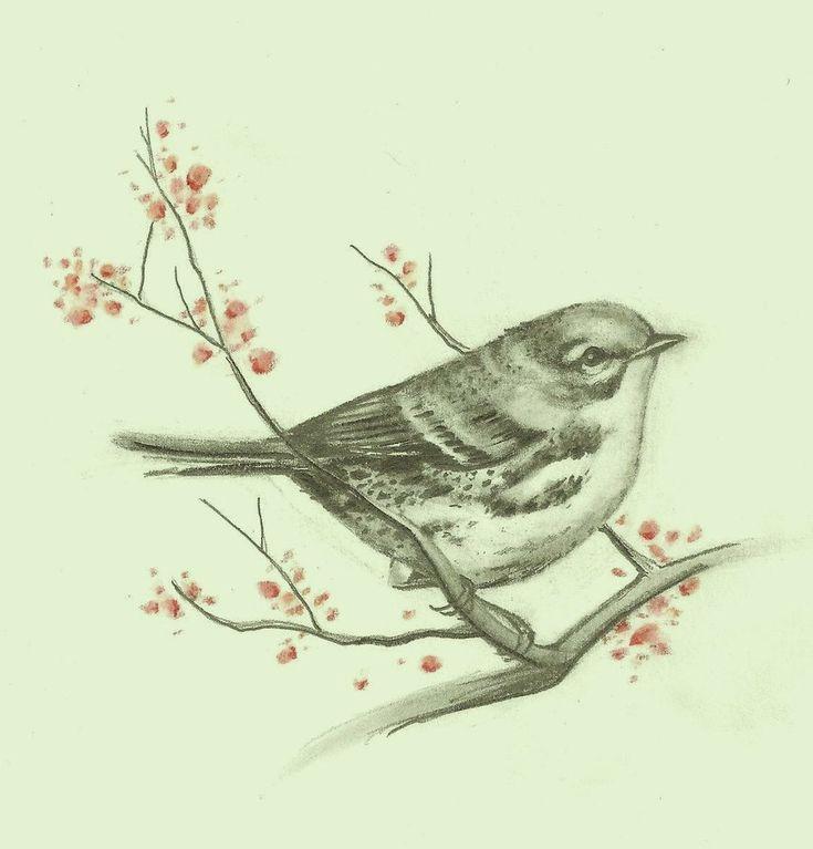 Cuban songbird tattoo design by McTats.deviantart.com on @deviantART