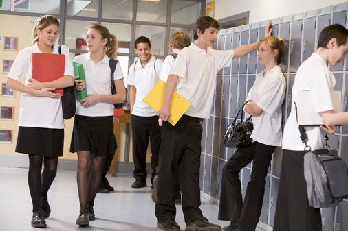 This lesson focuses on school uniform and teenage dress codes.
