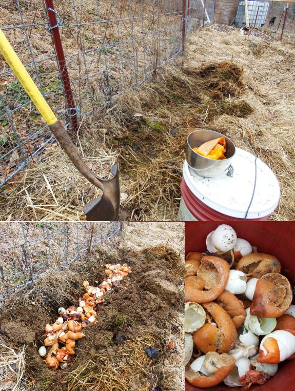 """Interesting blog """"The Walden Effect"""" permaculture farming MANY ASPECTS. Here: Burying bokashi"""