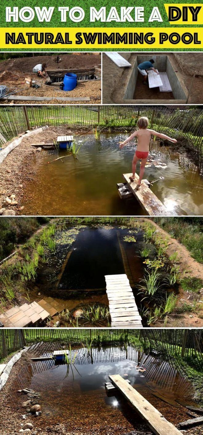 How To Make A Diy Natural Swimming Pool Natural Swimming Ponds Swimming Pond Diy Swimming Pool