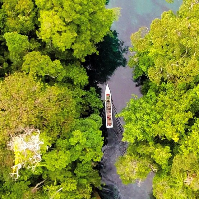 Labuan Cermin Lake, Derawan Island, East Borneo, Indonesia