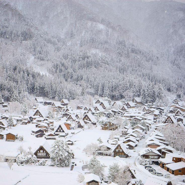 Today's Shirakawago! About 50cm snow fell from yesterday.o  #shirakawago #worldheritage #special #白川郷 #世界遺産  #snow #winter #雪 #冬 #gifu #japan #岐阜 #日本