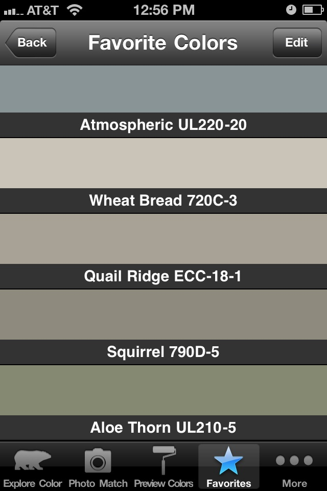 more paint color ideas - atmospheric is nice