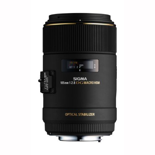 Looking for a new macro lens? Don't go any further until you check this out. #sigma #macro