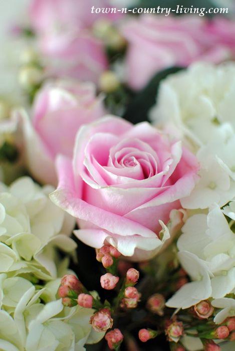 564 best Flower Power images on Pinterest | Floral arrangements ...