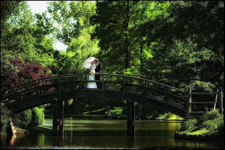 Wedding Couple - Sal Cincotta