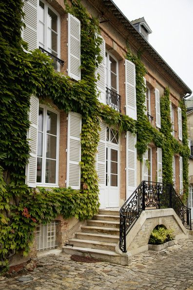 the vines on Hotel du Marc.