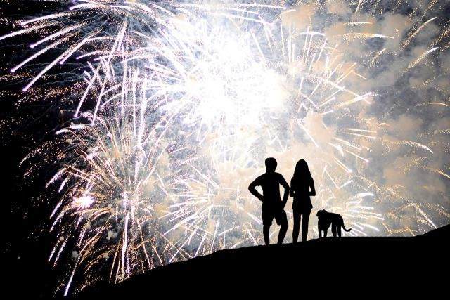 A fear of fireworks is very common in dogs. The good news is that there are ways to deal with a dog's fireworks phobia which can ease his stress and anxiety. Learn the best ways to manage your dog's fear of fireworks.