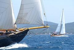 Sailing in Costa d'Argento, Maremma, Tuscany, Italy