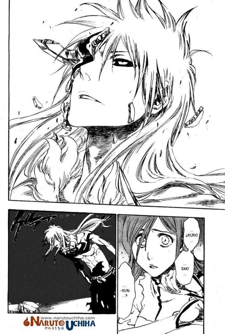 Bleach manga capitulos 353 en Español Página 4