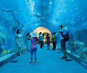 Dubai: One Perfect Day   Qantas Travel Insider