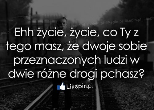 Ehh życie, życie, co Ty z tego masz, że... - Likepin.pl #cytaty potworek.com