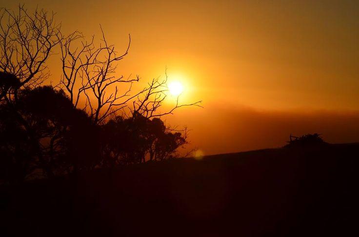 Bushfire sunset near Kilmore ,Victoria