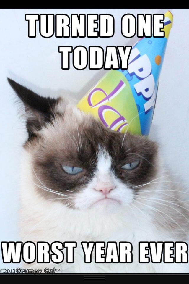worst year ever grumpy cat pinterest
