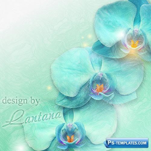 Творческий psd исходник для дизайна - Голубые орхидеи