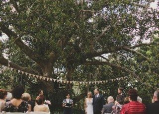 Ceremony - Governors Lawn.  Sheer white fabric draped over the tree instead of bunting?