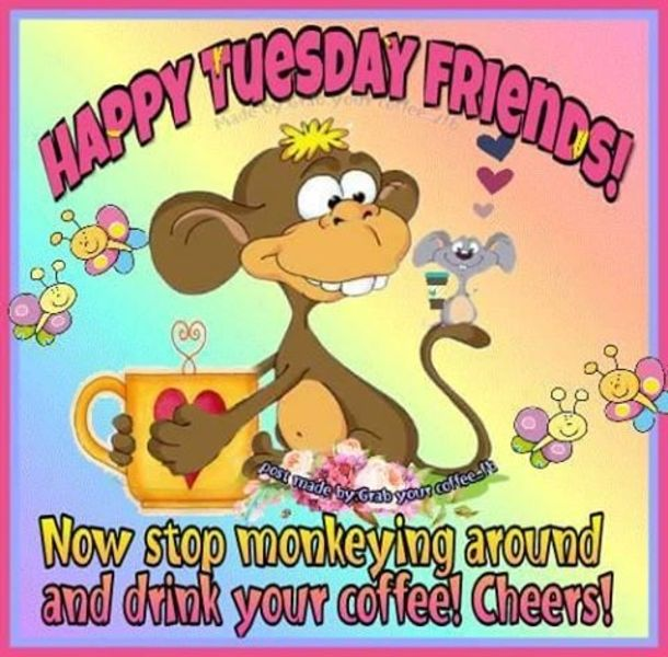 50 Best Happy Tuesday Quotes And Sayings With Pictures Happy Tuesday Quotes Happy Tuesday Pictures Tuesday Quotes Good Morning