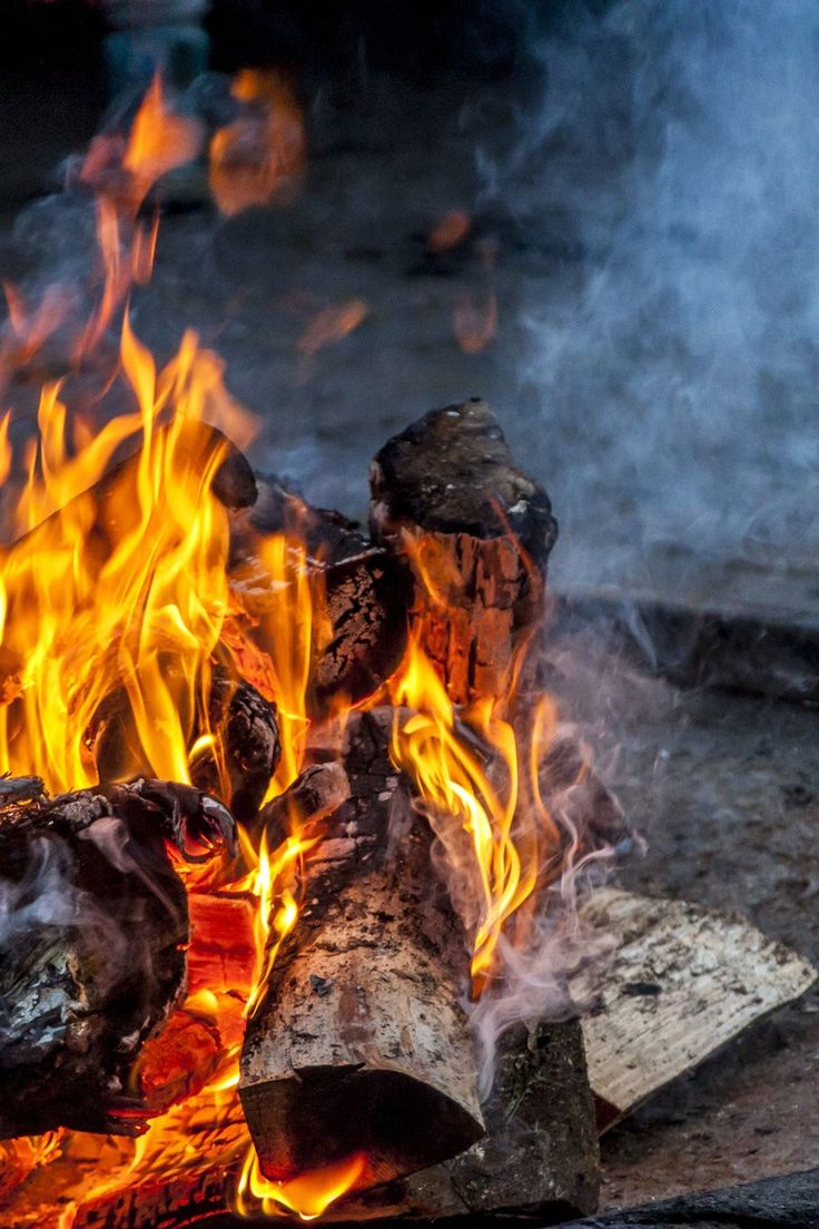 Free stock photo of fire, hot, outdoors, campfire