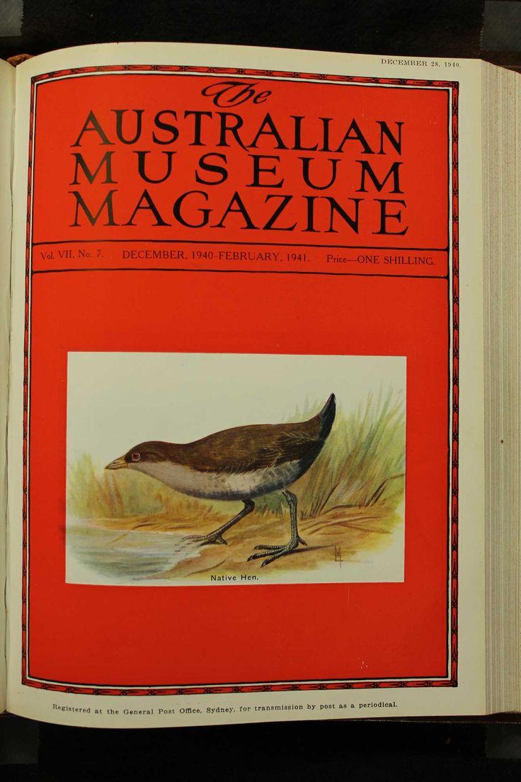 Australian-Museum-Magazine. The Native Hen. Illustrator: Lilian Medland. http://australianmuseum.net.au/Australian-Museum-Magazine-1921-1942/