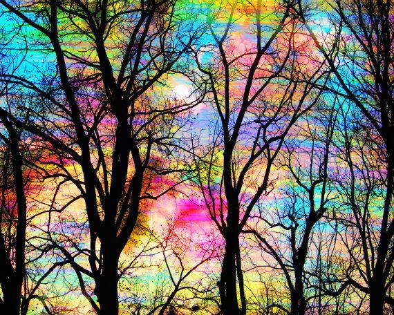 árboles, 16 x 20, algodón de azúcar, regalos / jardinero y naturalista, arbolado de boda, fotografía de naturaleza, paisaje feliz, de decoración, dormitorio