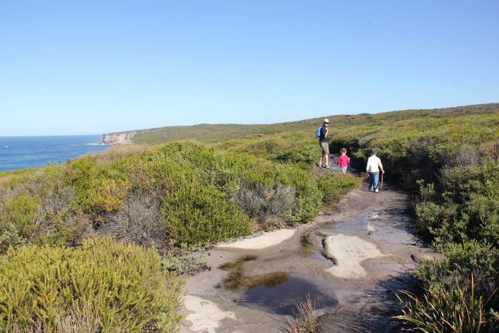 Coast Walk Bundeena