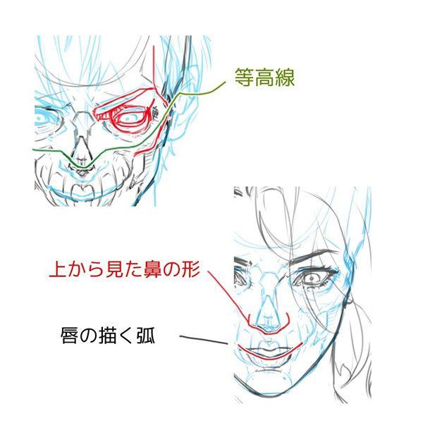 構造から理解しよう あおりと俯瞰 フカン のついた顔の描き方 いちあっぷ 顔のスケッチ 顔 顔 描き方