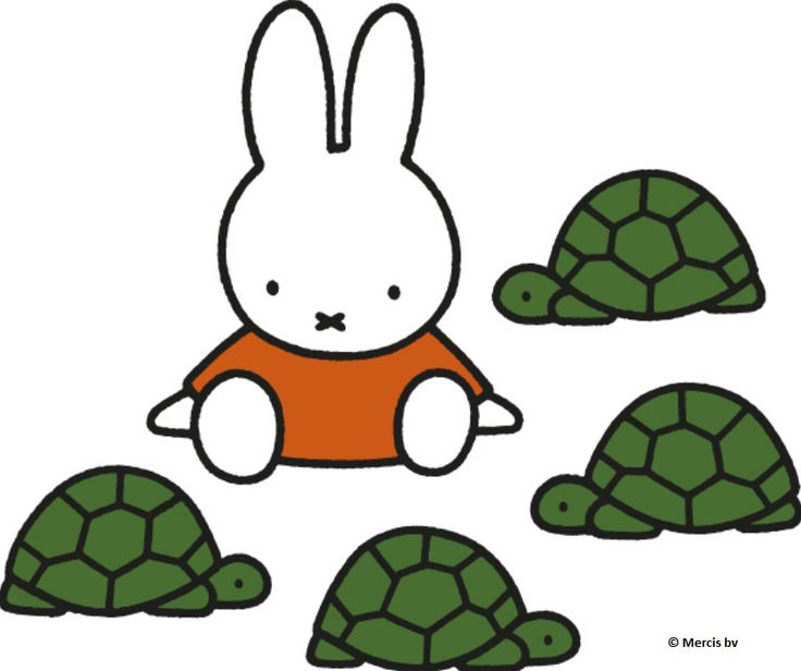 Miffy with the turtles