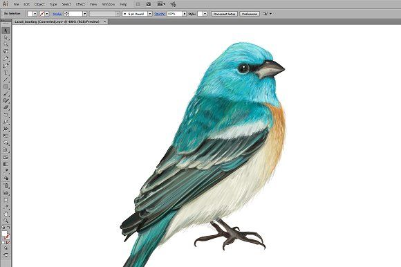 3184324 Lazuli bunting. Blue cardinal bird hand drawn vector illustration  cardinal, vector, illustration, birds, northern, red, cute, animal, cartoon, wild, wildlife, isolated, design, nature, toucan, color, owl, bullfinch, flying, natural, woodpecker, watercolor, humming, tropical, background, hummingbird, exotic, green, hand, botanical, summer, drawing, branch, leaves, beautiful, silhouette, seagull, flock, wings, sky, pigeon, collection, dove, jungle, geography, colorful, asia, forest…