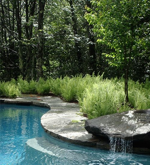 Swimming pool with nice organic curves, natural stone and a beautiful little waterfall, all nestled in to lush ferns and forest. Yes, please. From: 63 Relaxing Garden And Backyard Waterfalls | DigsDigs
