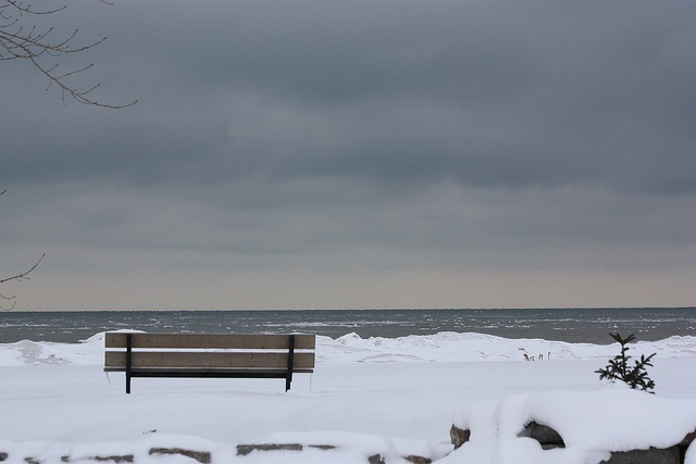 Lake Erie - let's go back and take pictures in the snow babe!