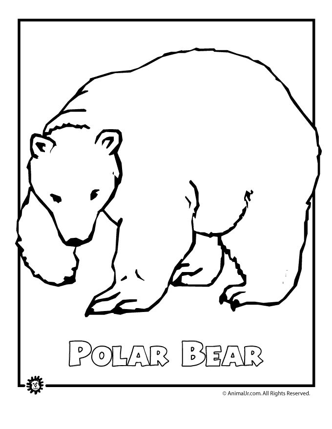 polar bears coloring pages children | polar bear | Bear coloring pages, Polar bear coloring page ...