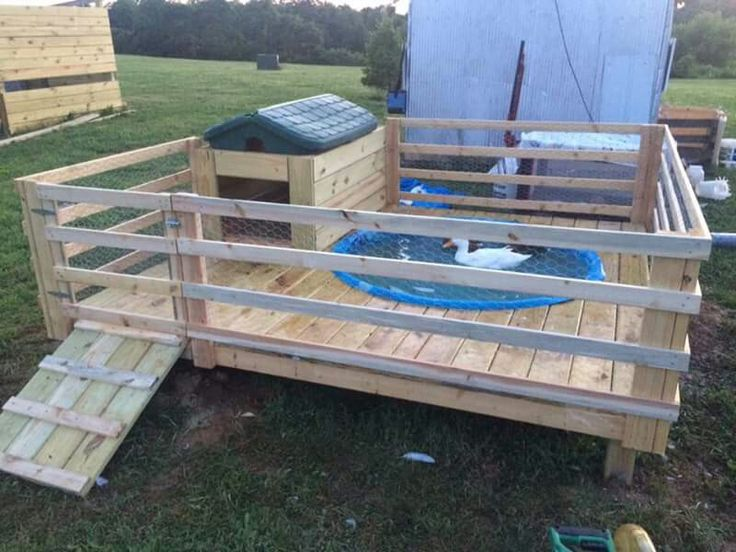 25 best ideas about duck pens on pinterest duck coop for How to build a duck pen
