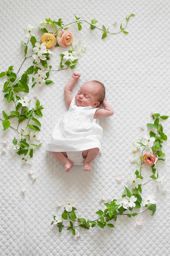 Spring floral newborn photos by matt julie weddings flowers by bows and arrows
