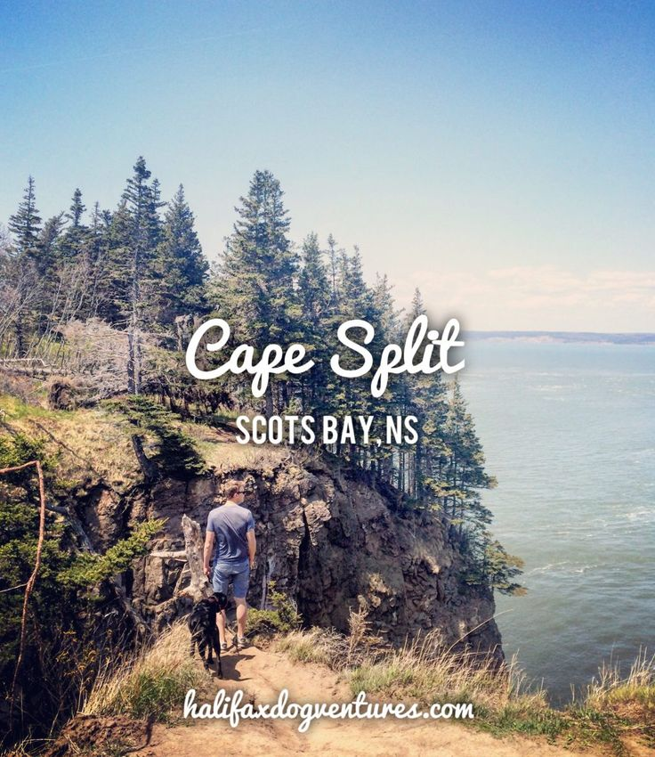 Cape Split in Scots Bay, Nova Scotia is an easy favourite. But this is one dogventure that is more about the destination than the journey. halifaxdogventures.com