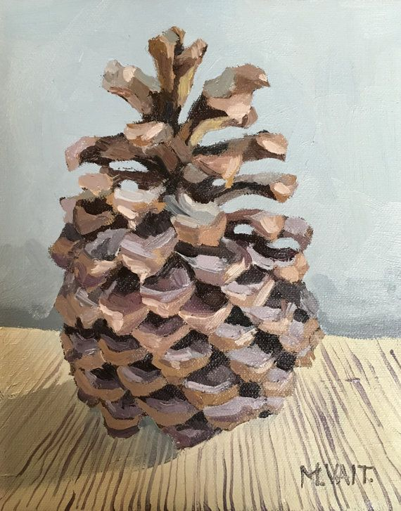 pinecones illustrations