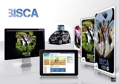 BISCARROSSE -campagne 3D