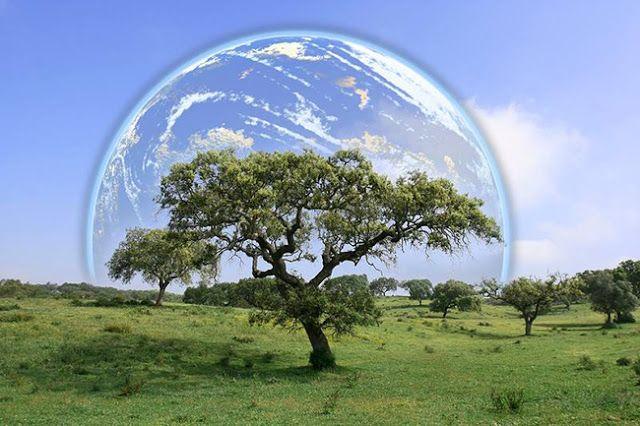 World Environment Day Essay Pdf Speech For Student Short On W
