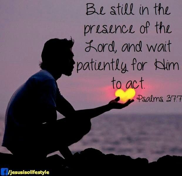 Be still in the presence of the LORD,  wait patiently for Him to act.  Psalm 37:7