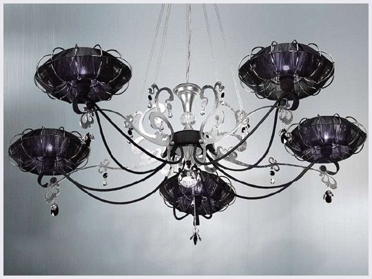 love the black & purple