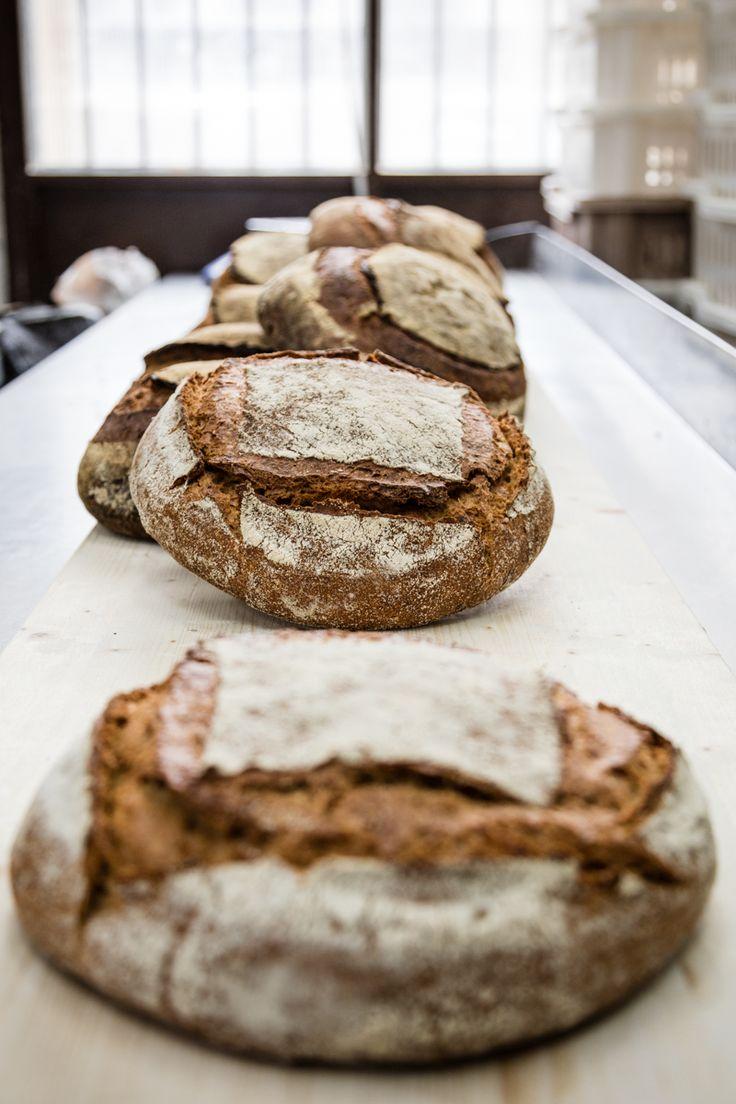Free Bakers Unite! La nuova generazione del pane italiano. Testo di Laura Lazzaroni, ph di Guido Rizzuti.