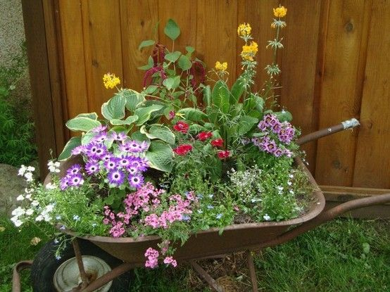 wheelbarrow garden - ideas for our front yard and maybe under the big tree in the back yard. Need to find old wheelbarrows though!
