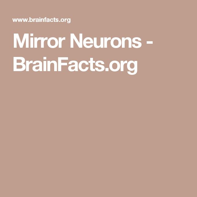 Mirror Neurons - BrainFacts.org