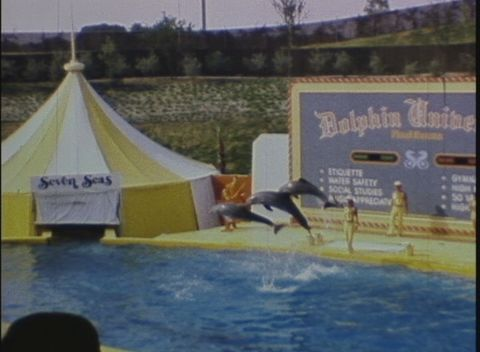 The Victor Black Collection - Seven Seas Marine Life Park, Part I (1973)