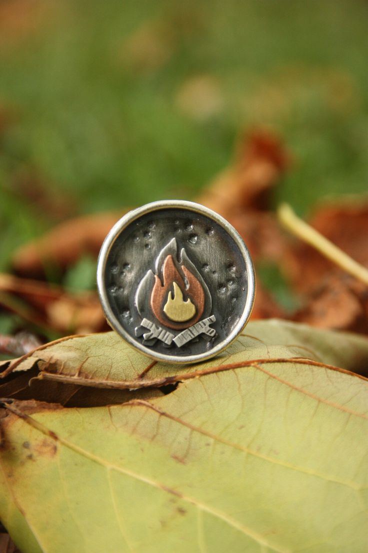 Best 25 Campfire Ring Ideas On Pinterest