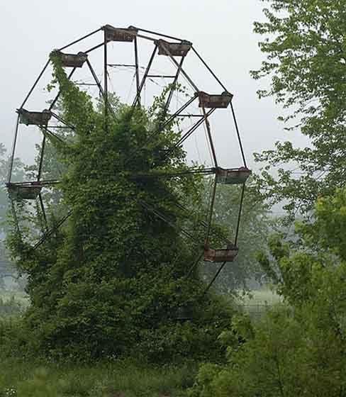 .Nature, West Virginia, Green, Lakes, Abandoned Amusement Parks, Gardens, Places, Ferris Wheels, North Carolina