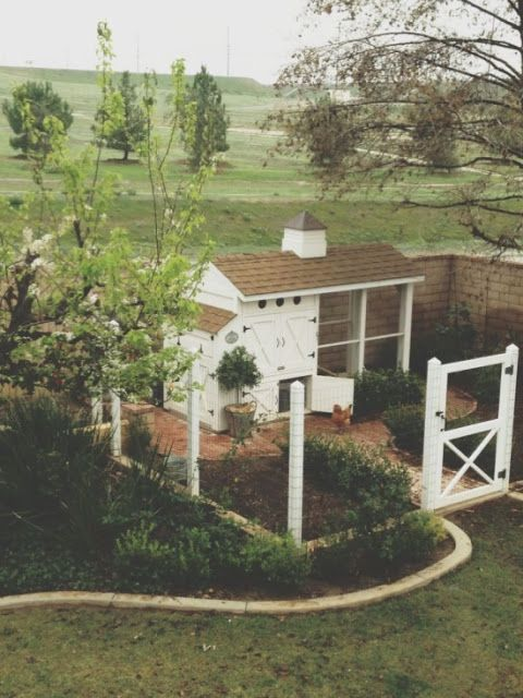 Heather Bullard designed chicken coop. She sells coop blueprints.  Lauren Liess | Pure Style Home