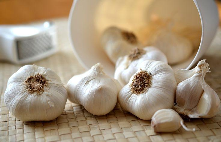 Природный антибиотик чеснок