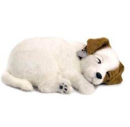 Stuffed Jack Russell Terrier